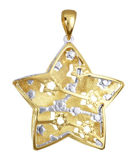 Χρυσό κολιέ αστέρι δίχρωμο 016361 Χρυσός 14 Καράτια