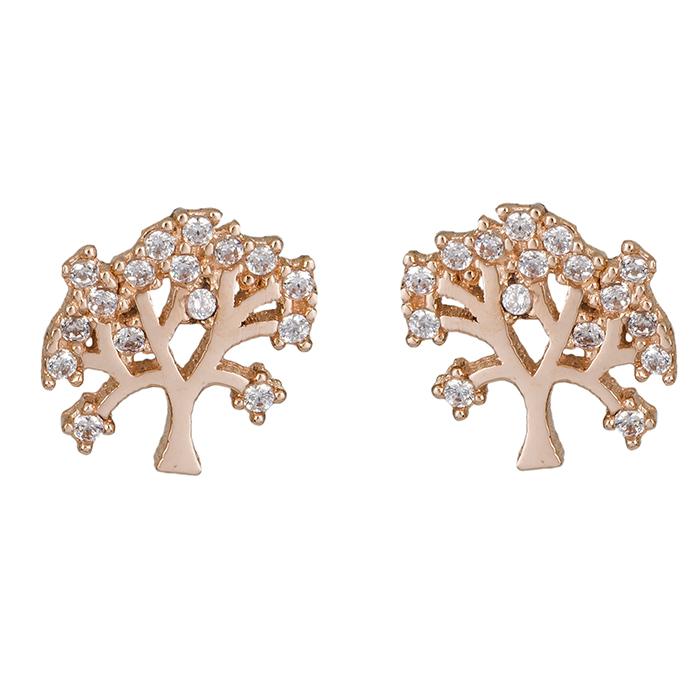 Ροζ gold σκουλαρίκια