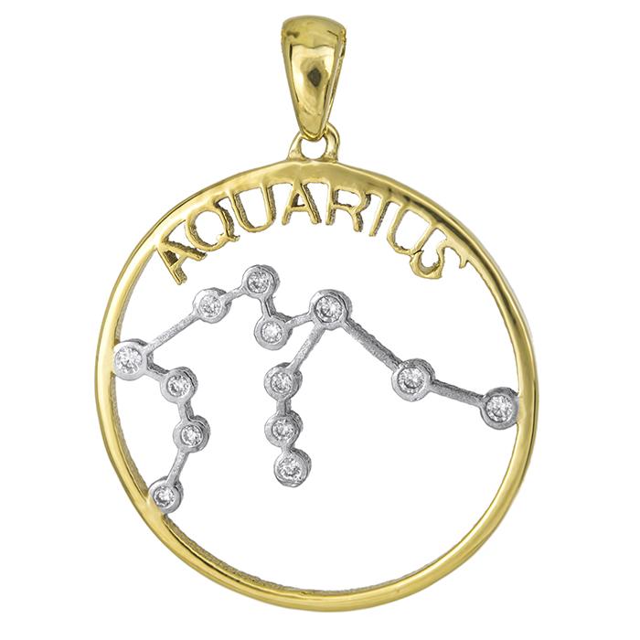 Ζώδιο του Υδροχόου από χρυσό Κ14 027050 027050 Χρυσός 14 Καράτια