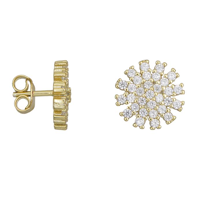 Γυναικεία σκουλαρίκια νιφάδα 925 028360 028360 Ασήμι